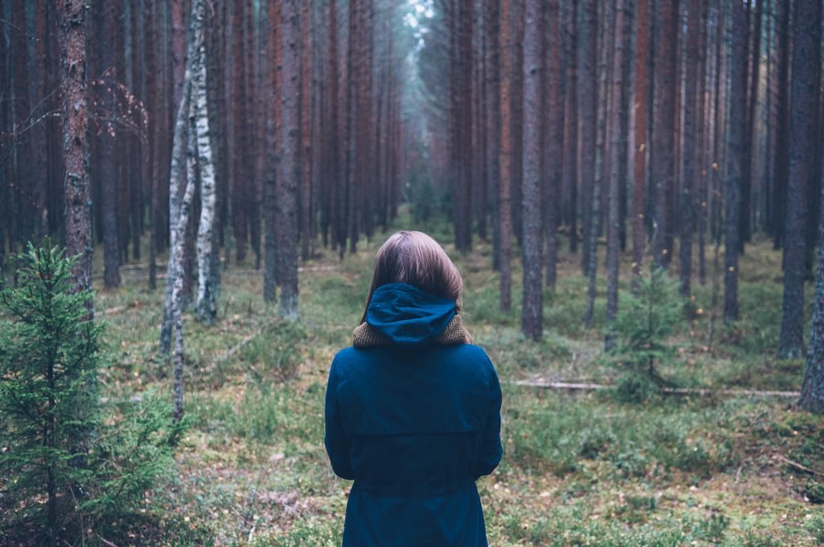 Landschaft, Baum, Natur, Wald, Wildnis, Person, Mädchen, Porträt, Herbst, Wald, Lebensraum, Ökosystem, natürlichen Umgebung