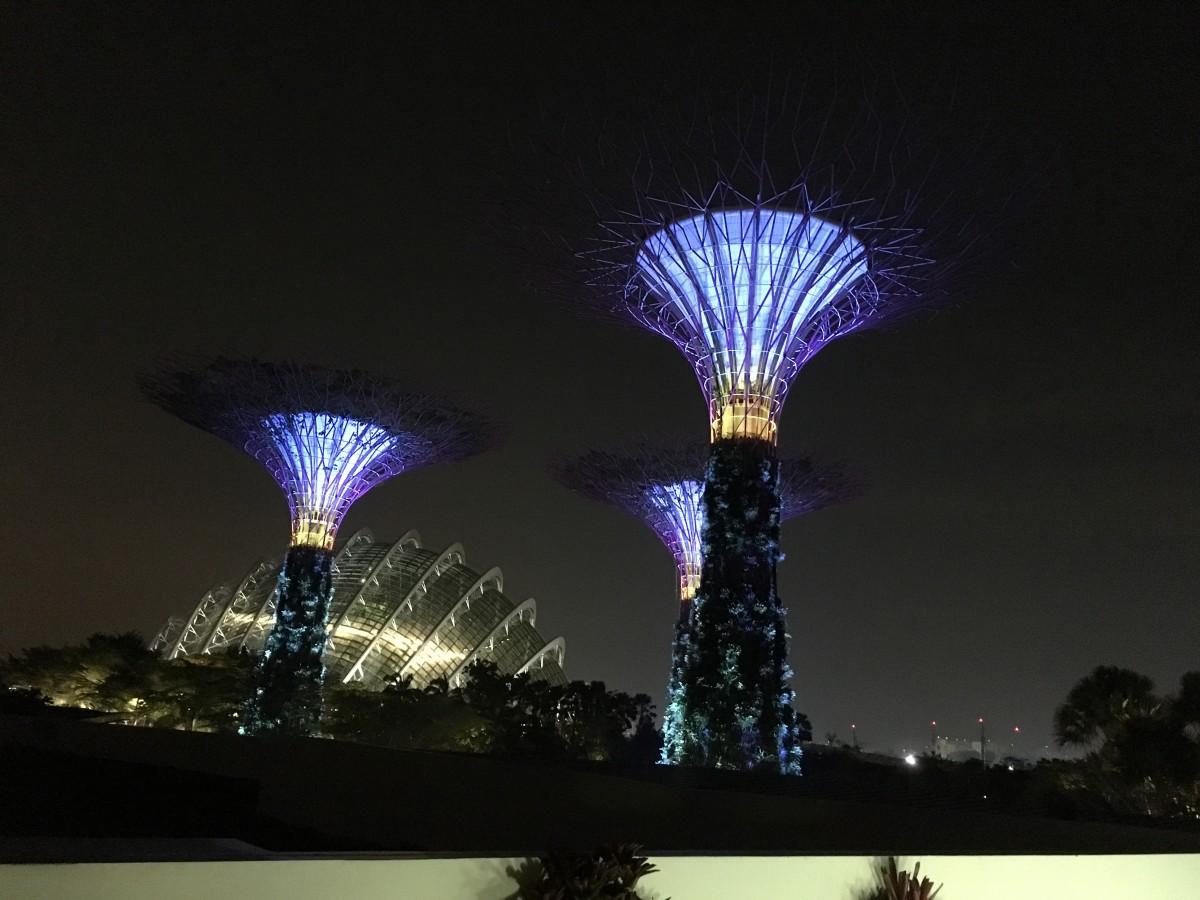 light night recreation reflection asia blue
