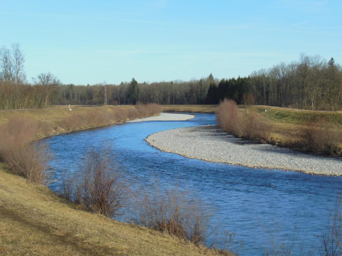 Kostenlose foto wasser gras sumpf see fluss kanal for Fischteich wasser reinigen