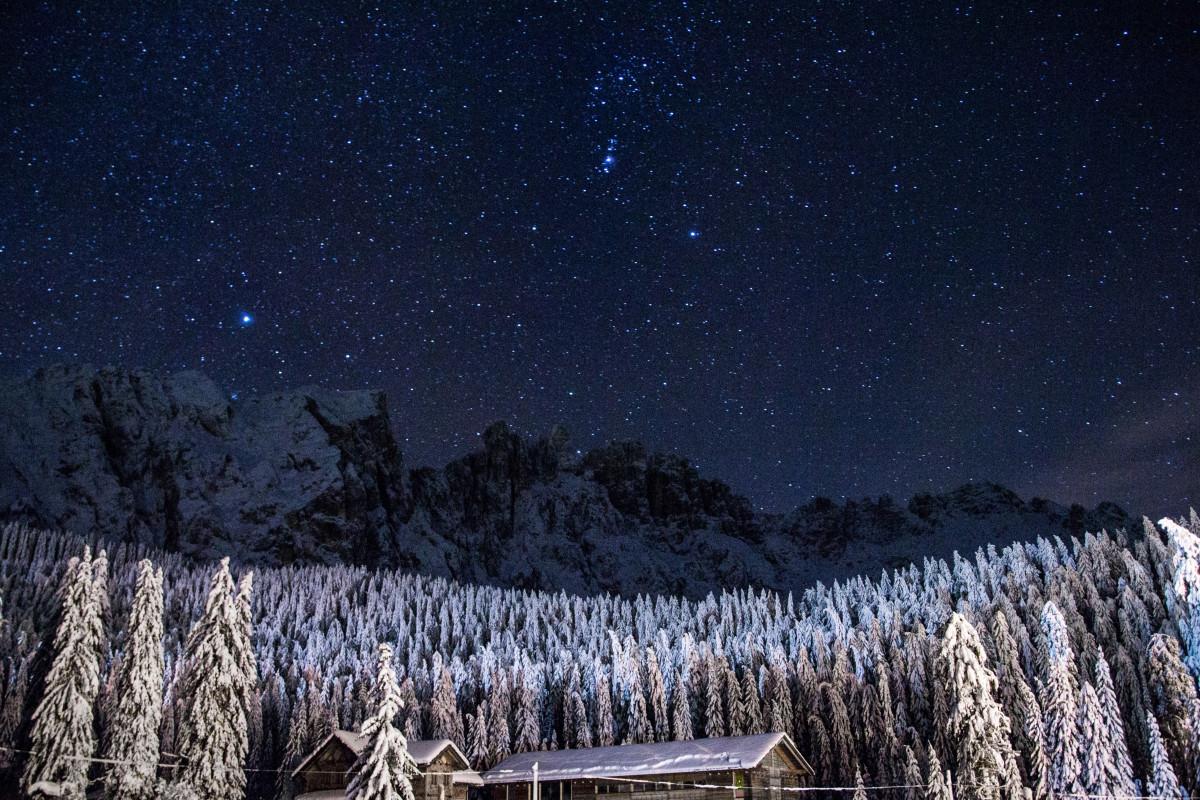 Звёздное небо и космос в картинках - Страница 37 Foliage_forest_houses_mountains_night_pine_trees_sky_snow-914775