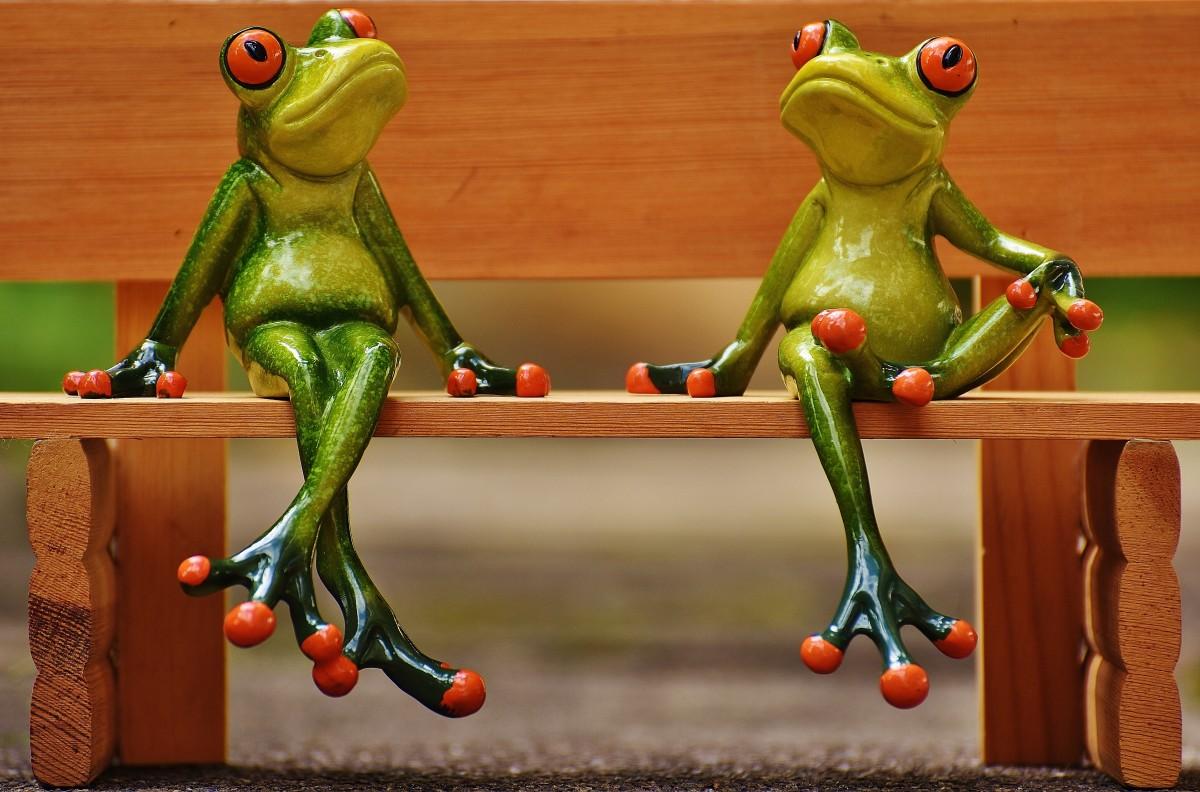 Картинки приколы с лягушками