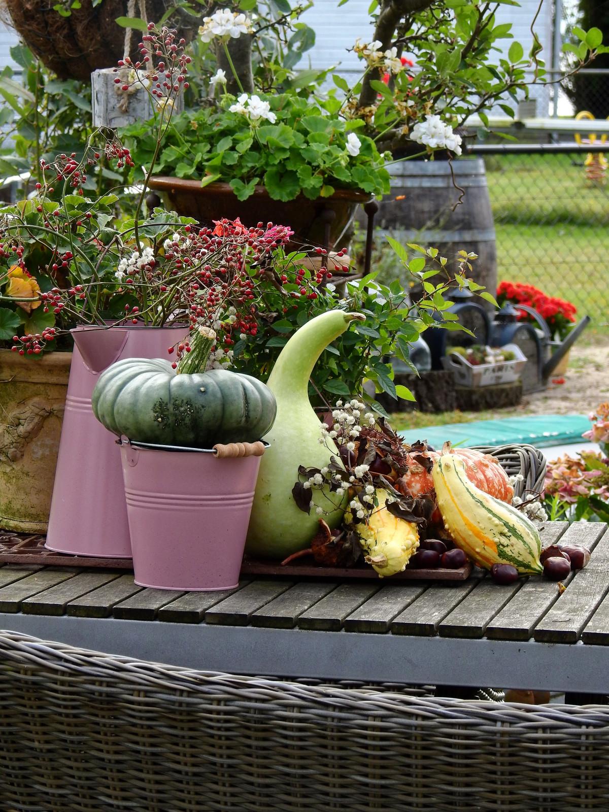 Blossom, Flower, Bloom, Teapot, Pot, Decoration