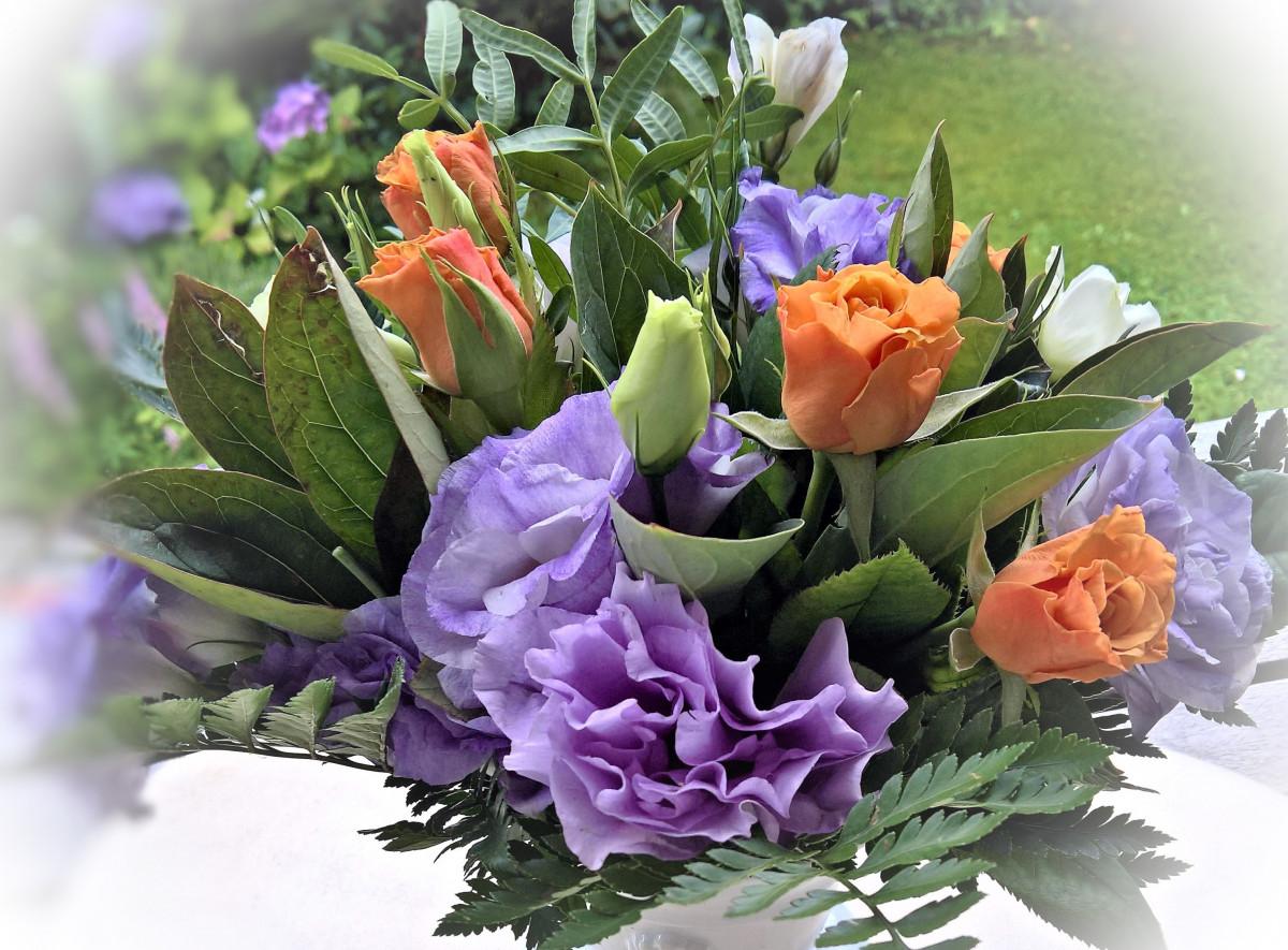 Fotos Gratis Flor Verano Flora Arreglo Floral Hermosa