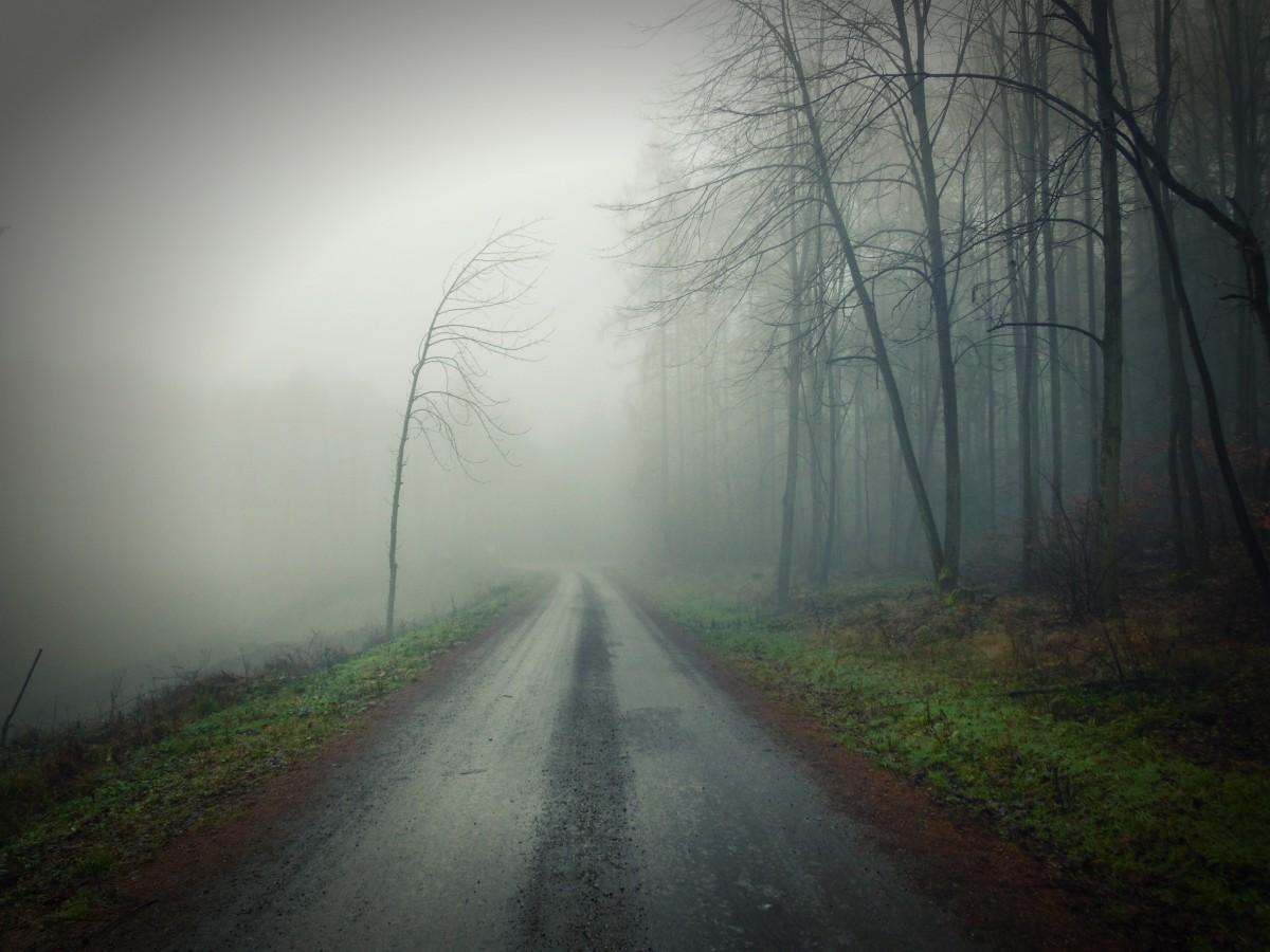 Картинки легкий туман