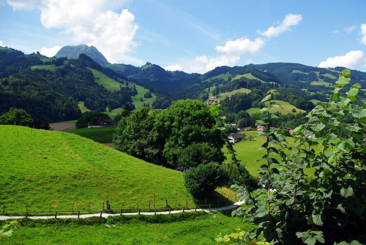 Images gratuites paysage herbe montagne vall e for Achat maison zone geographique