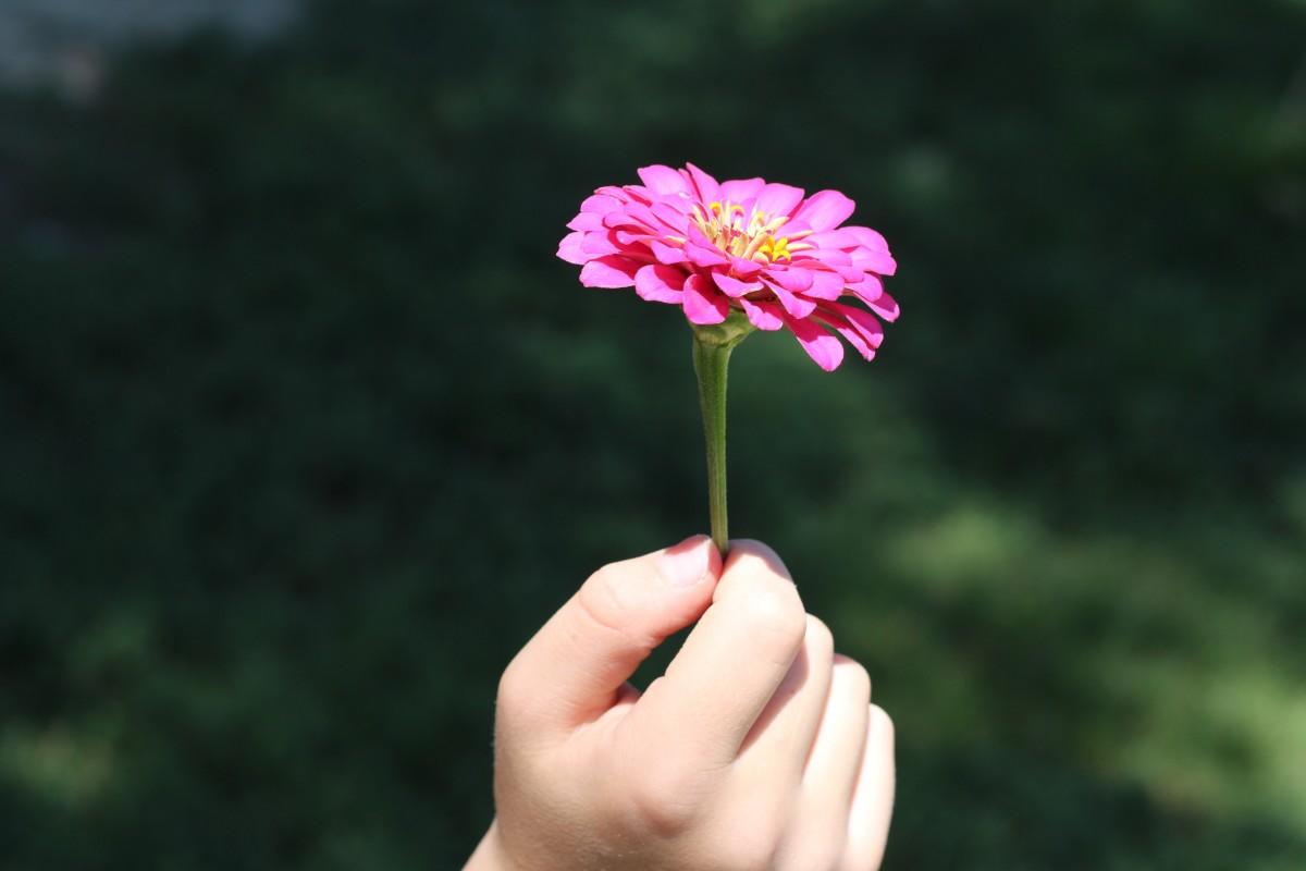 Днем рождения, картинки с цветами в руках лучшие