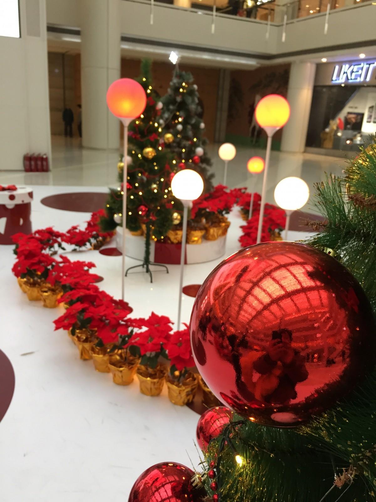 Fotos gratis planta flor plaza compras decoraci n for Decoracion para arboles navidenos