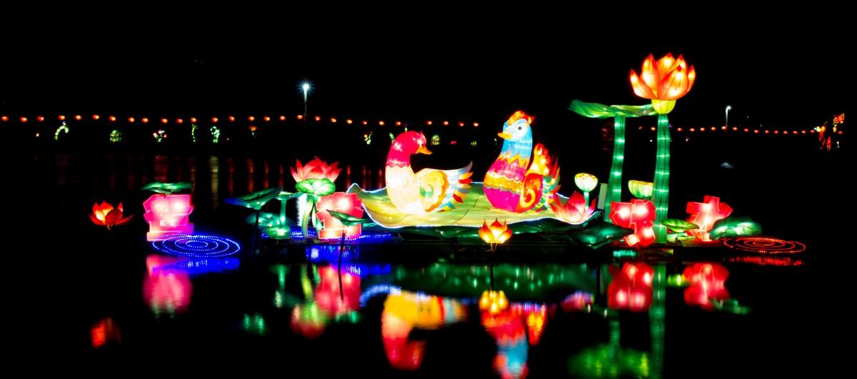 Images gratuites nuit poisson d coration de no l for Decoration nouvel an chinois