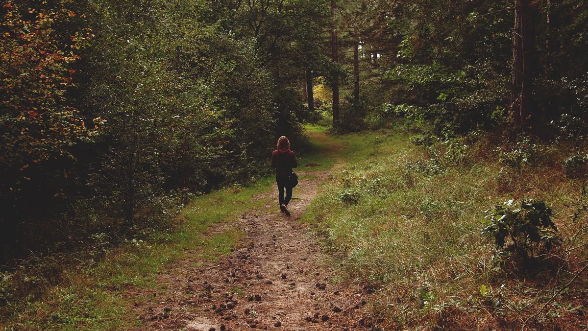 Пошли девки в лес гулять могу сейчас