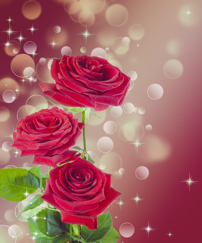 Днем рождения, открытка для галины розы