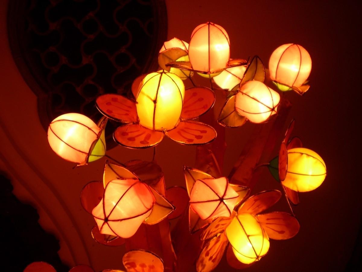 Цветок фонарь