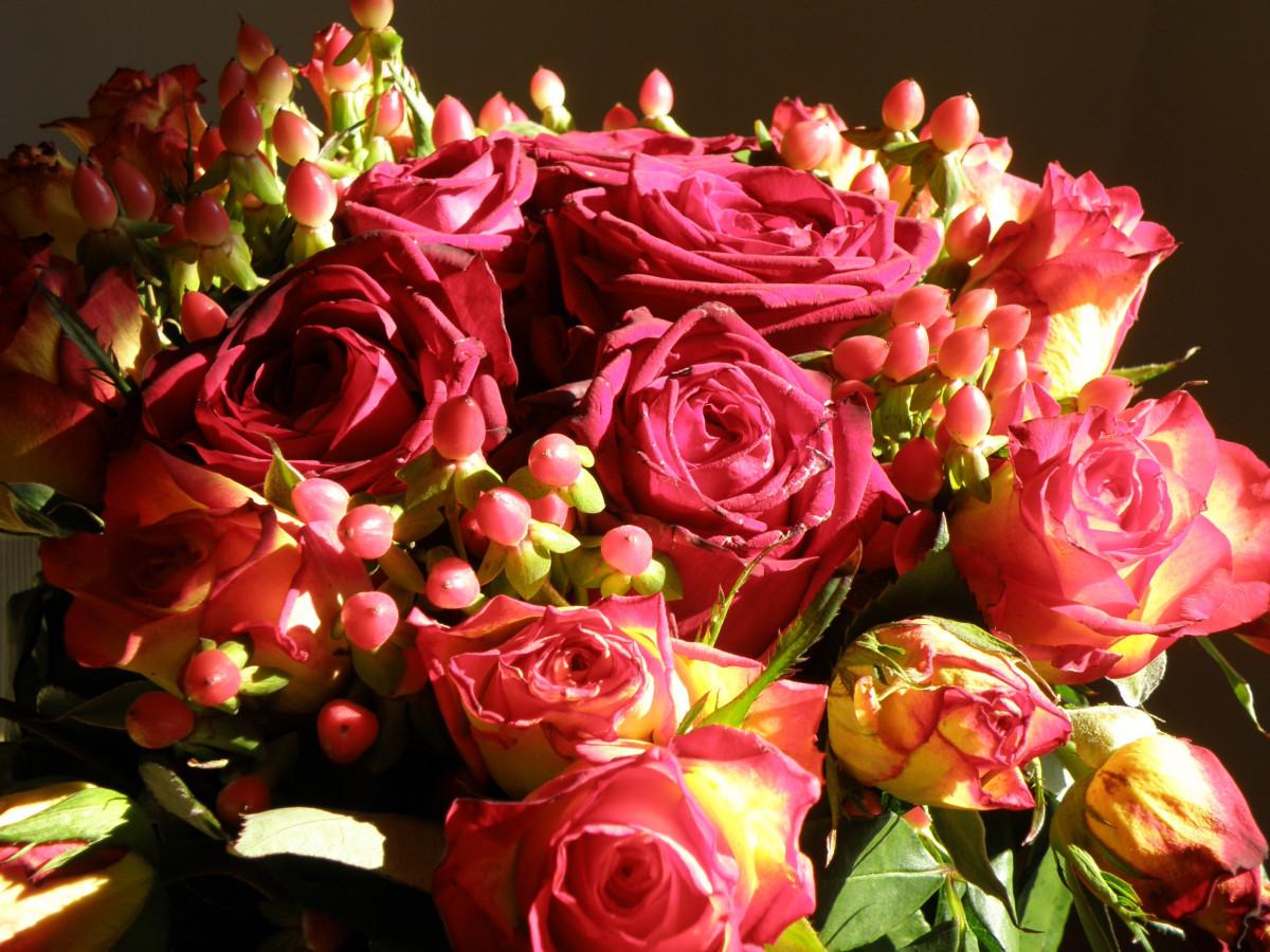 Belles photos de fleurs Les plus belles randonn es de France - m