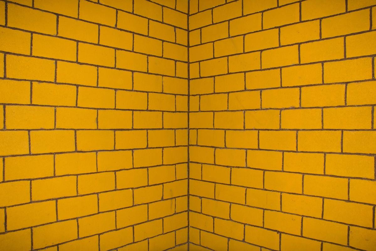 Free Images Texture Petal Floor Orange Pattern Line
