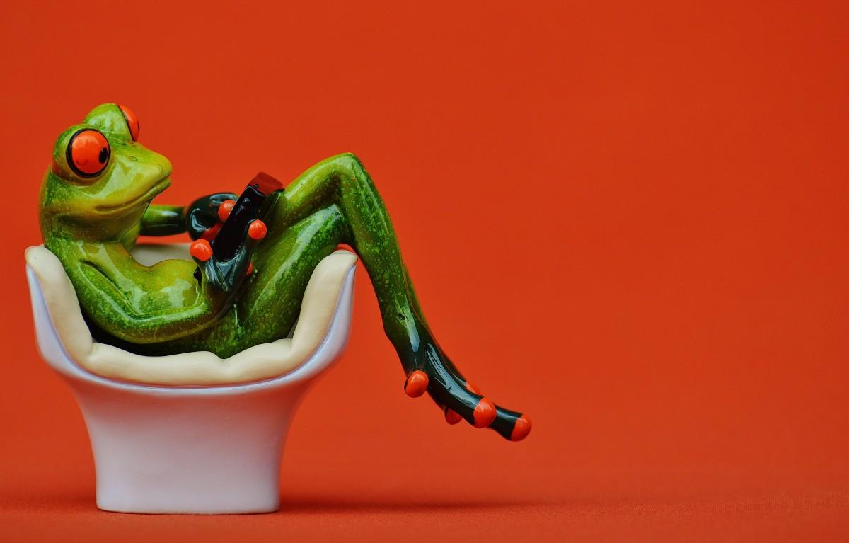 Картинка лягушки в кресле