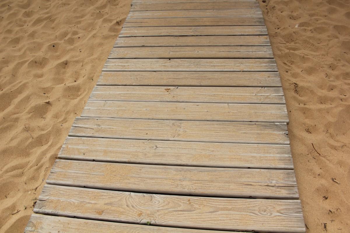 Free Images Landscape Nature Deck Boardwalk Floor