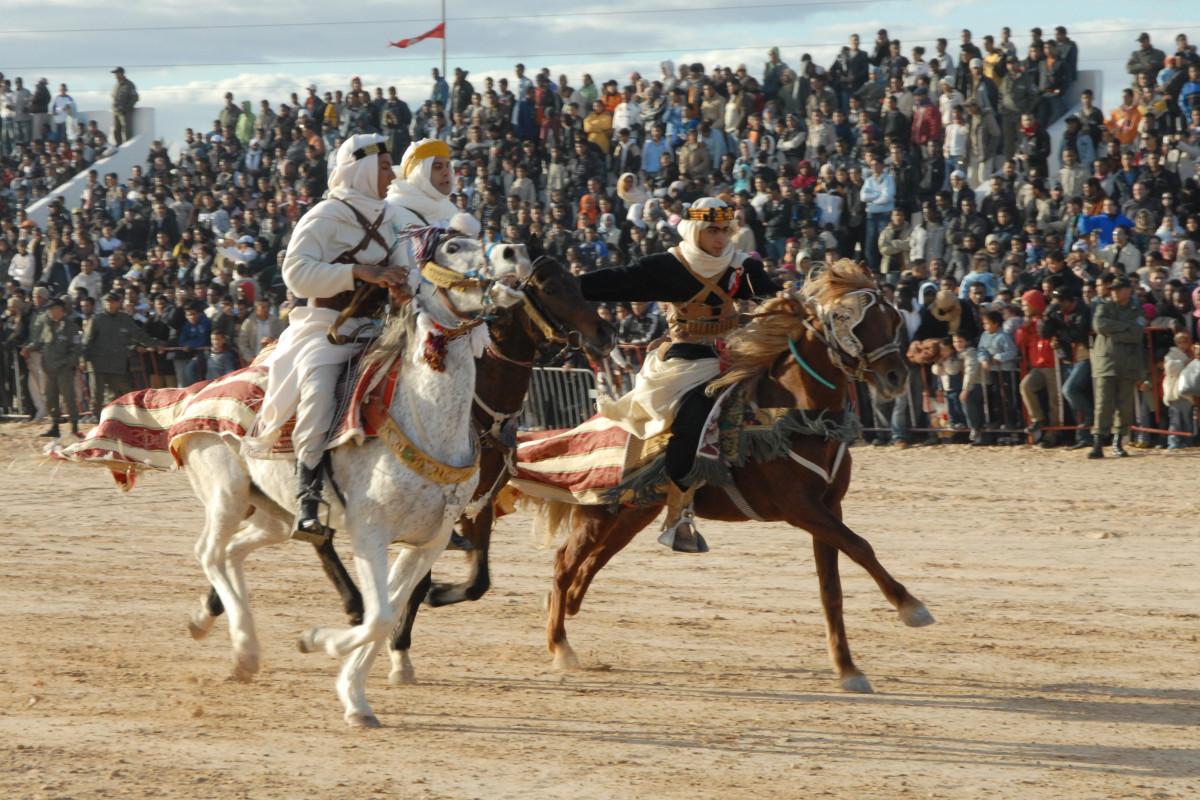 images gratuites comp tition des sports rodeo tunisie quitation western course de. Black Bedroom Furniture Sets. Home Design Ideas
