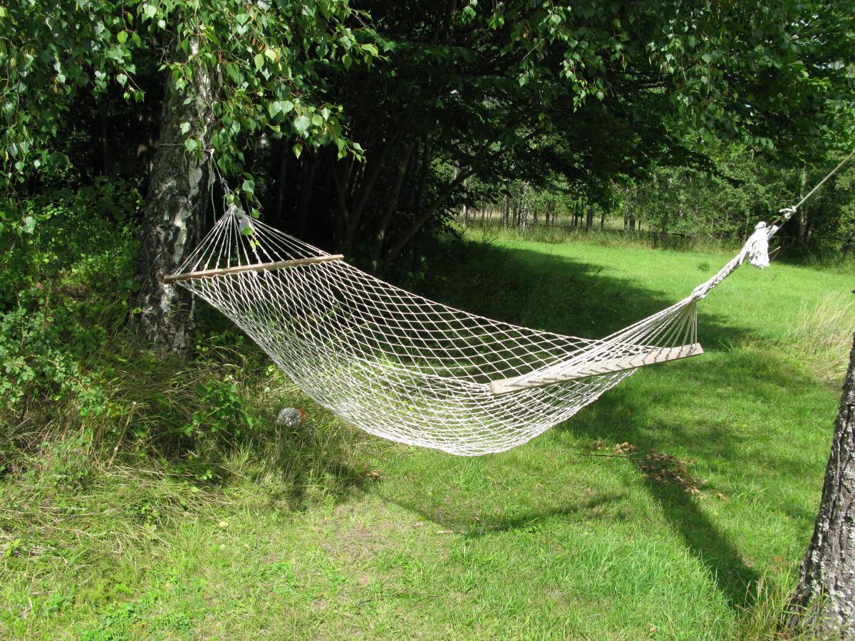 natur vinge sommer hengekøye nett Sverige Roslagen Roslagens skjærgården