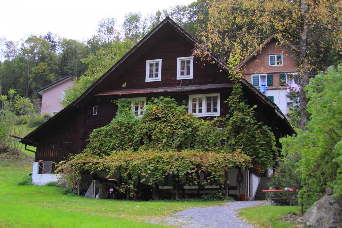 Images gratuites arbre ferme maison feuille b timent for Agrandissement maison zone verte