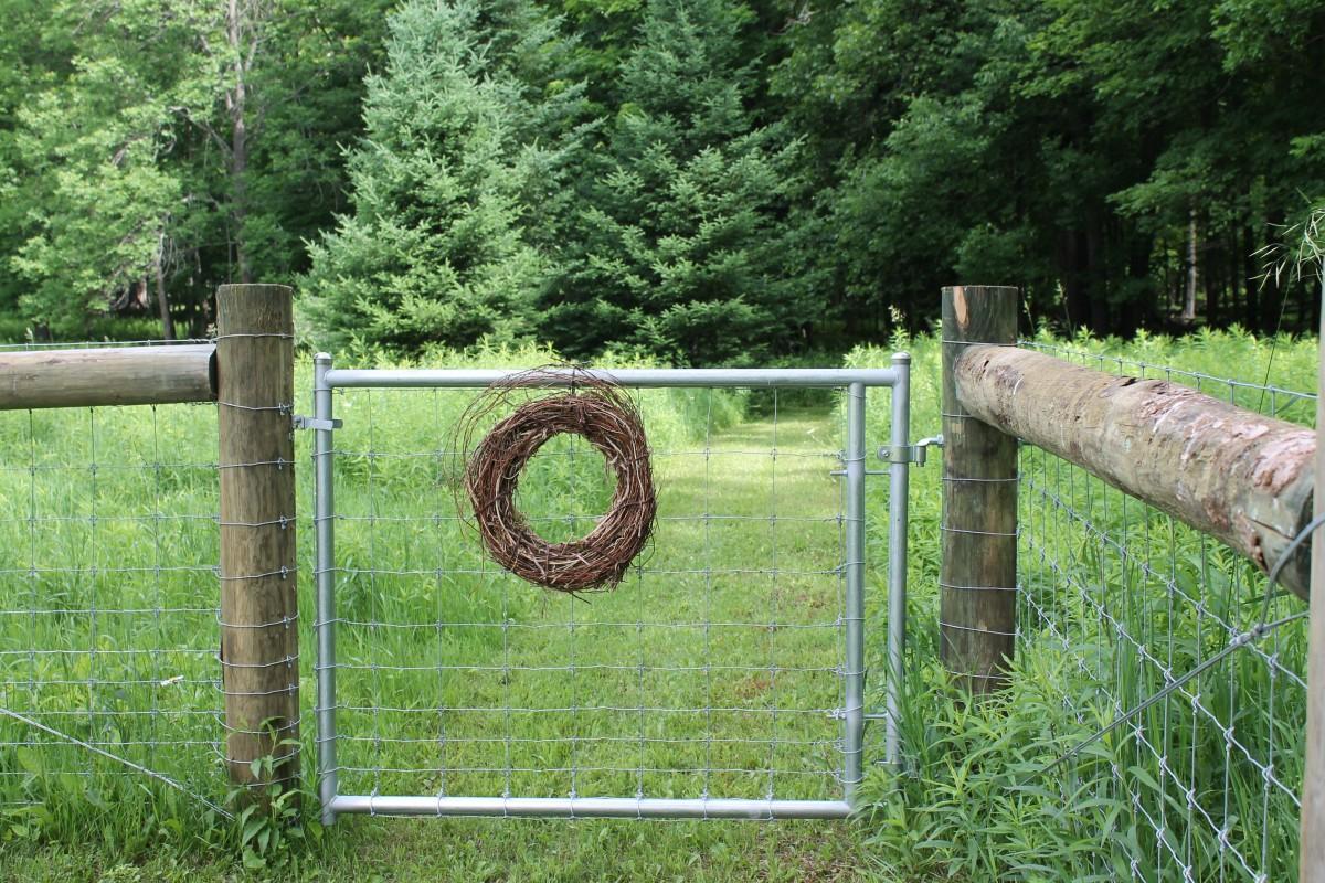 Staket stängsel staket : Bakgrundsbilder : natur, skog, staket, trä, trÃ¥d, grön, Port, dörr ...