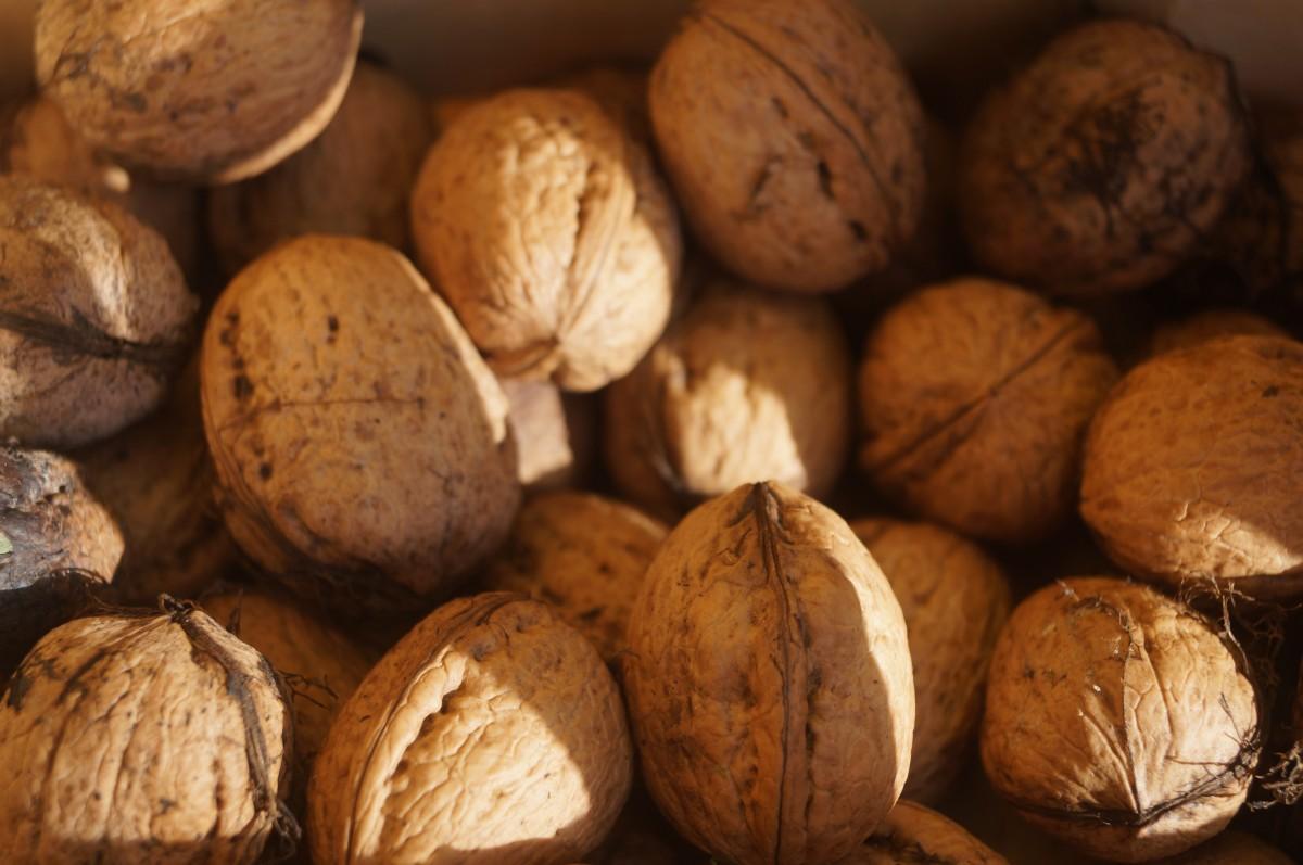images gratuites aliments produire marron crou manger coquille noyer noix de coco des. Black Bedroom Furniture Sets. Home Design Ideas