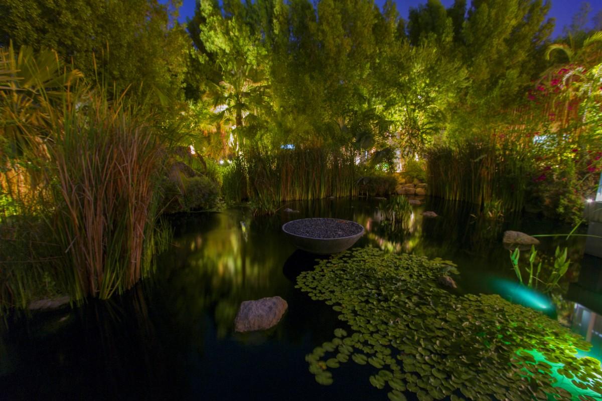 Gratis Afbeeldingen : boom, natuur, Bos, zonlicht, blad, rivier ...