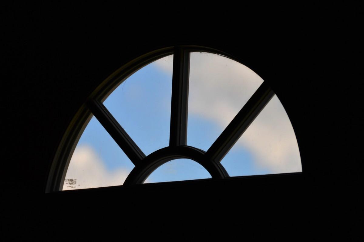 무료 이미지 : 분기, 건축물, 하늘, 일몰, 햇빛, 조직, 잎, 창문 ...