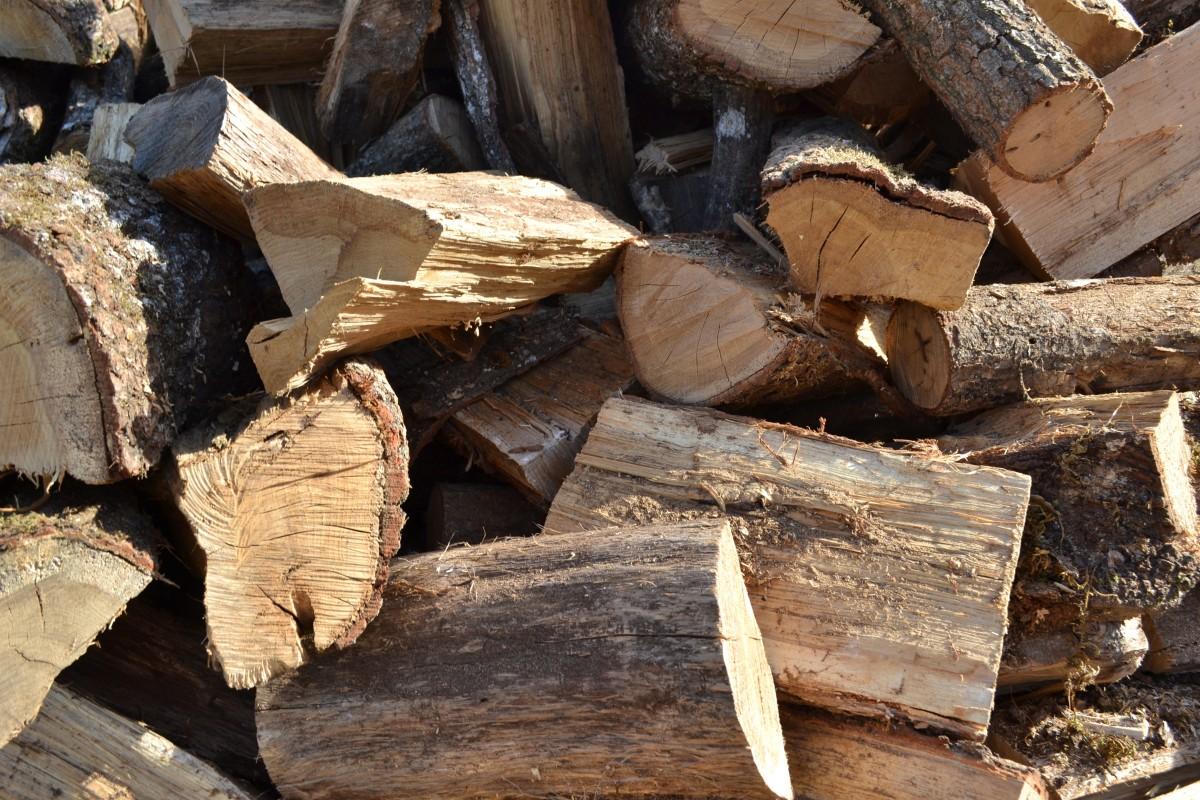 Fotos gratis rbol hoja el maletero fuego suelo maderas amish tallado le ador - Travail du bois pour debutant ...