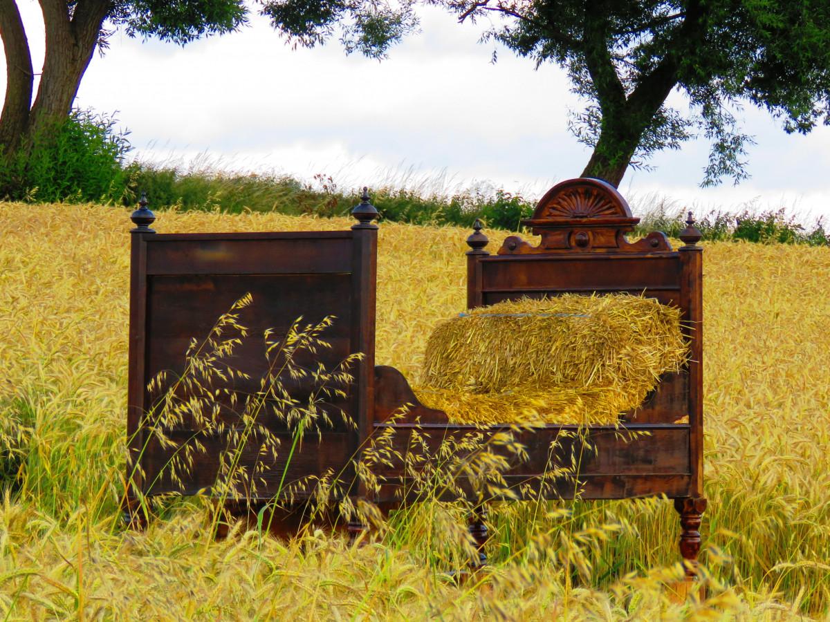 kostenlose foto gras holz m dchen heu feld pr rie nostalgie m bel landwirtschaft. Black Bedroom Furniture Sets. Home Design Ideas