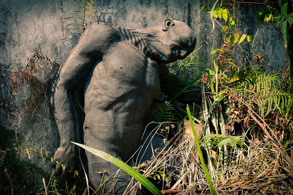 Images gratuites la nature for t faune statue jungle l phant habitat l phants et - Photos d elephants gratuites ...