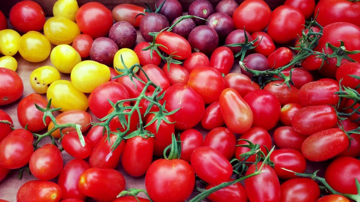 растение, фрукты, Главная, Пища, Красный, производить, Овощной, сад, Здоровый, вкусно, помидор, Выращивание, овощи, Помидоры, вишня, Шиповник, Биография, цветущее растение, Ацерола, Мальпигия, Наземный завод, Картофель и томатный сорт