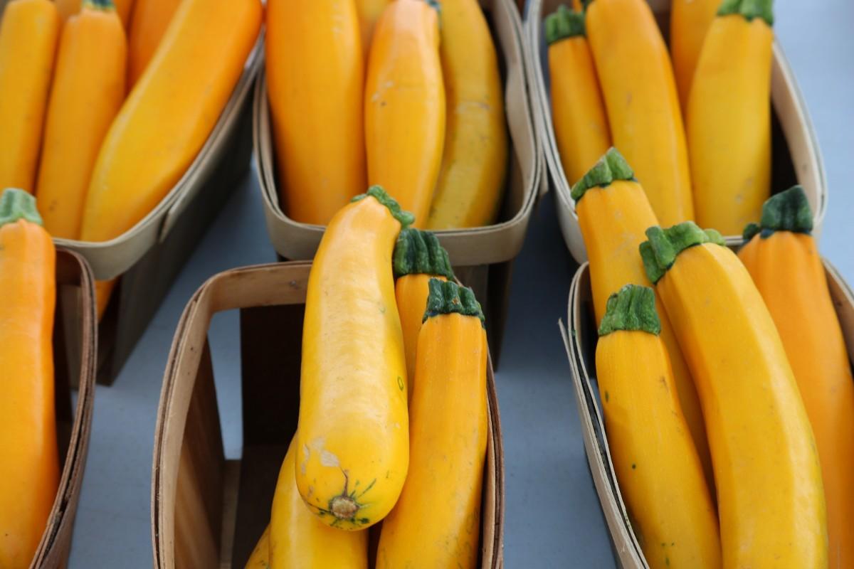 kostenlose foto frucht lebensmittel produzieren gem se herbst k rbis banane calabaza. Black Bedroom Furniture Sets. Home Design Ideas
