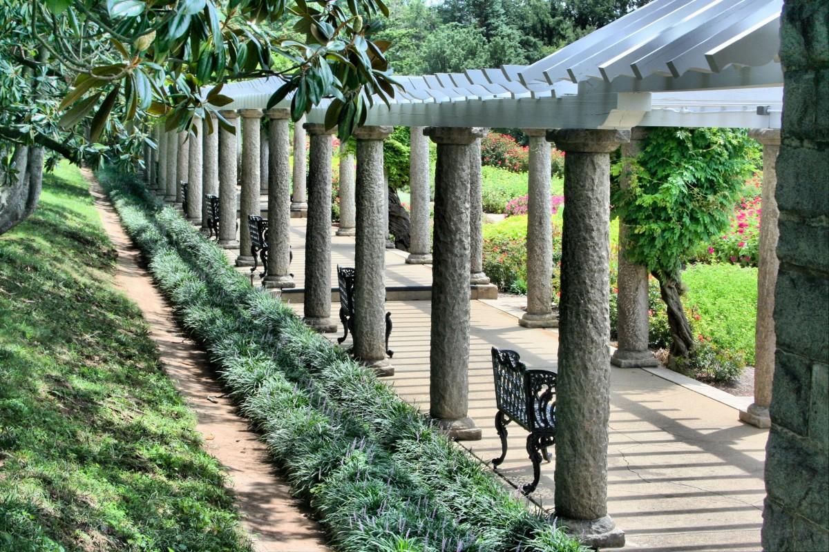 무료 이미지 : 울타리, 잔디, 보도, 뒤뜰, 흙, 정원, 마당, 옥외 ...