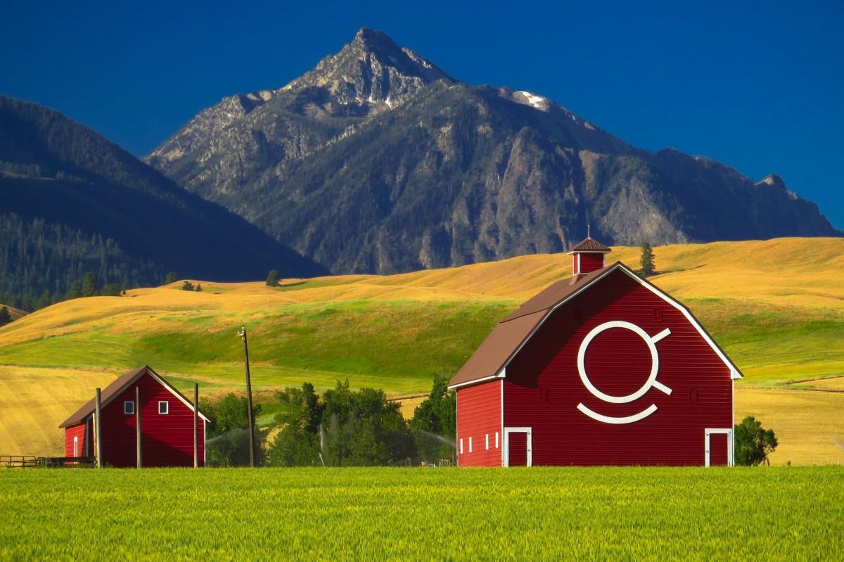 Free Images : landscape, architecture, field, farm, meadow ...