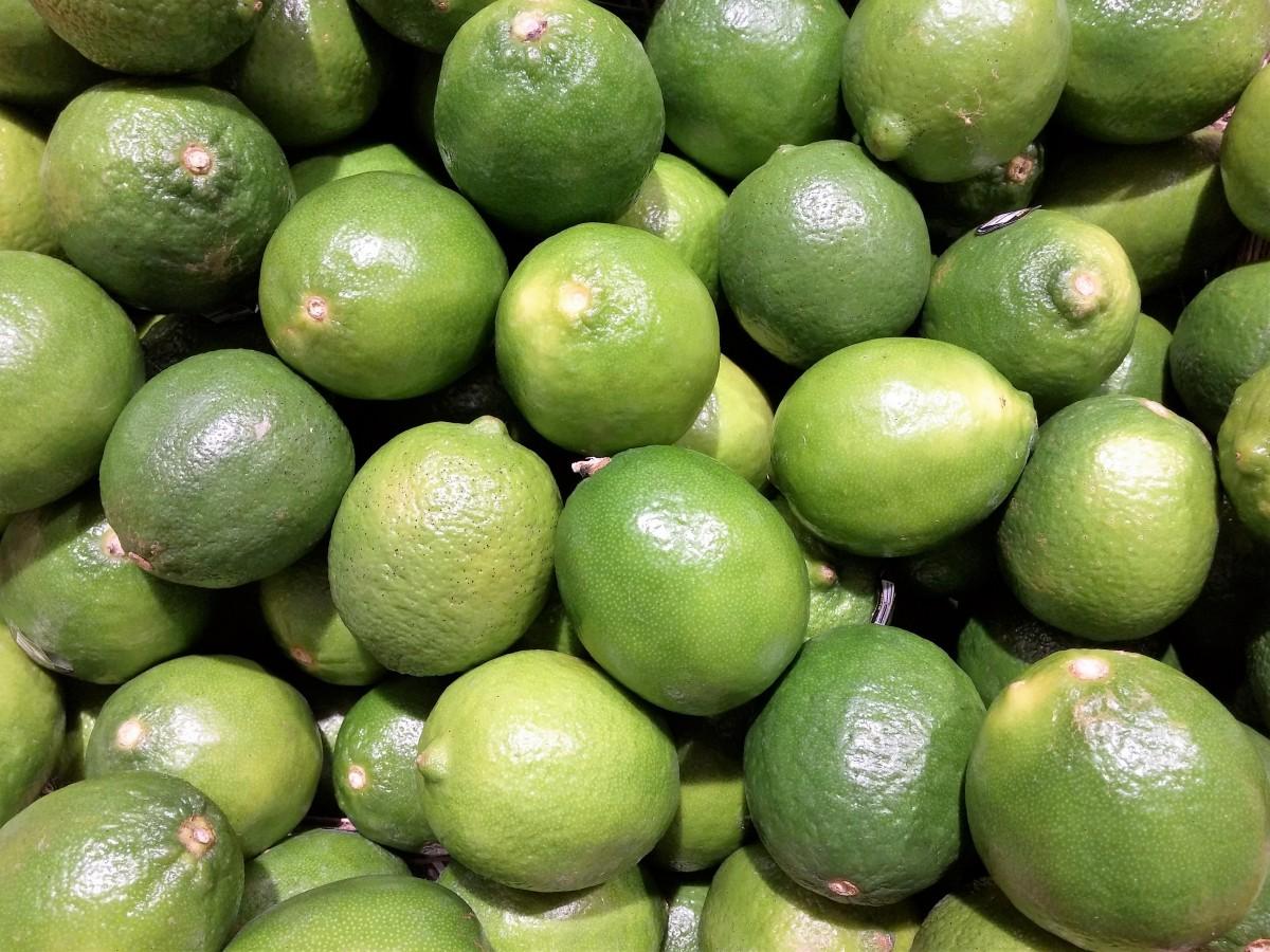 Images gratuites arbre la nature fruit feuille fleur oranger aliments produire en - Oranger du mexique feuilles jaunes ...