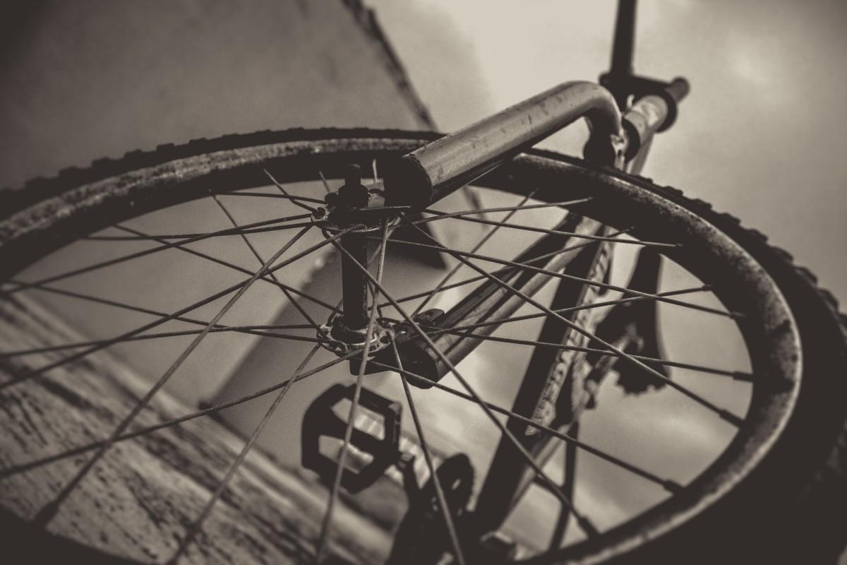 Kostenlose foto : Holz, Rad, Wüste, Rost, Fahrzeug, Speiche, Zügel ...