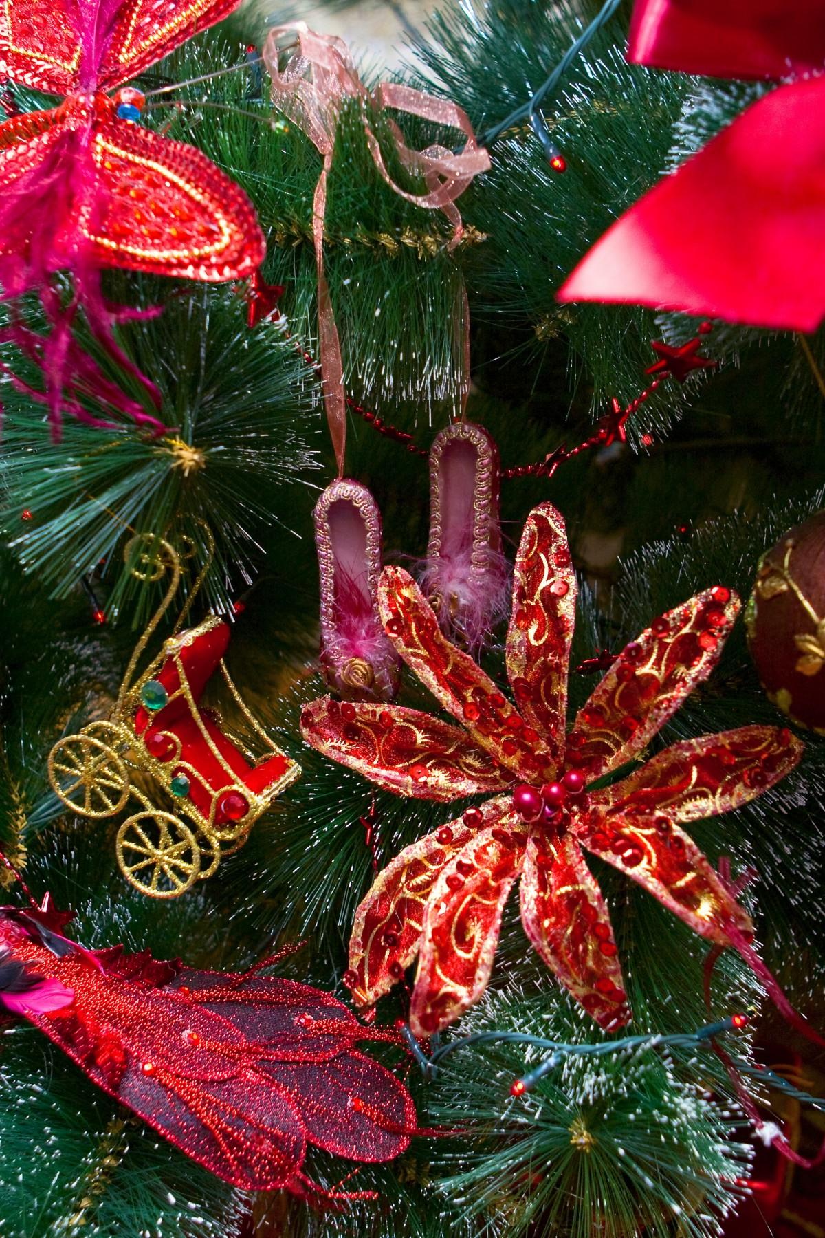 Images gratuites branche rouge produire vacances for Plante noel rouge