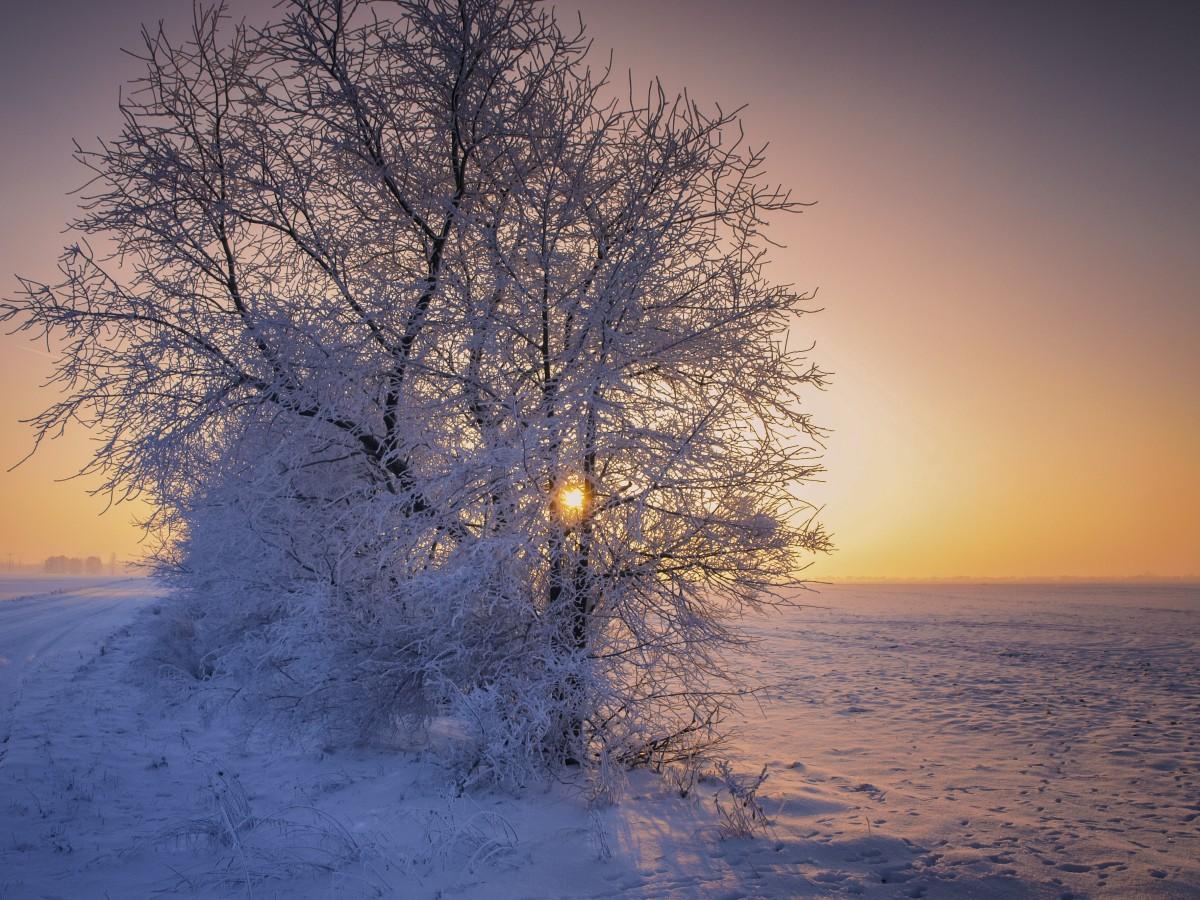 Free images landscape nature snow cold sunrise