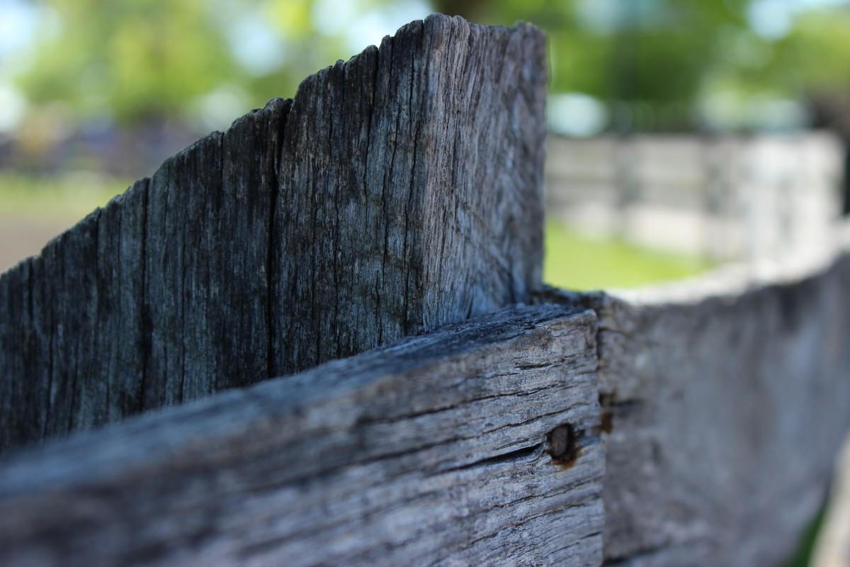 множество картинки забор с гвоздями уже