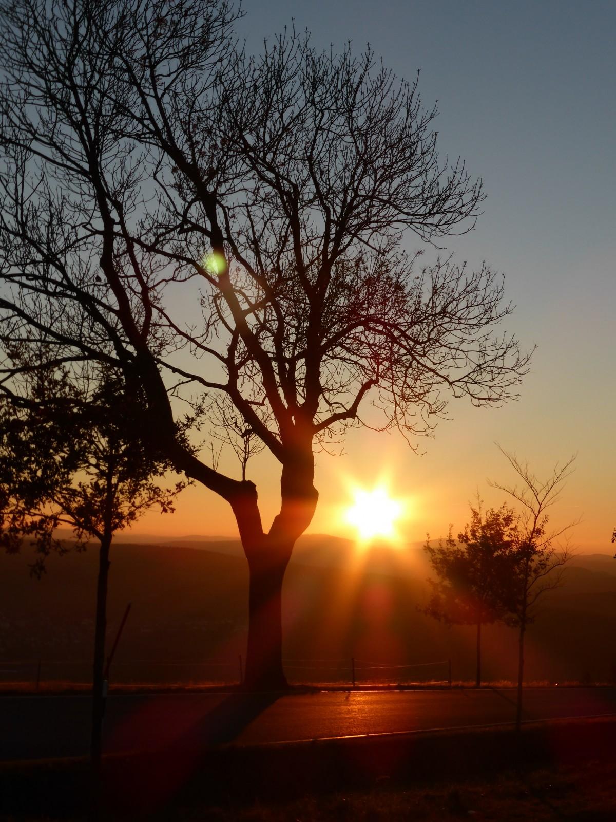 Sunlight Morning Dawn Refraction Dusk Evening Orange Shadow Romance Aesthetic Clouds Mood Abendstimmung Afterglow Atmospheric Phenomenon