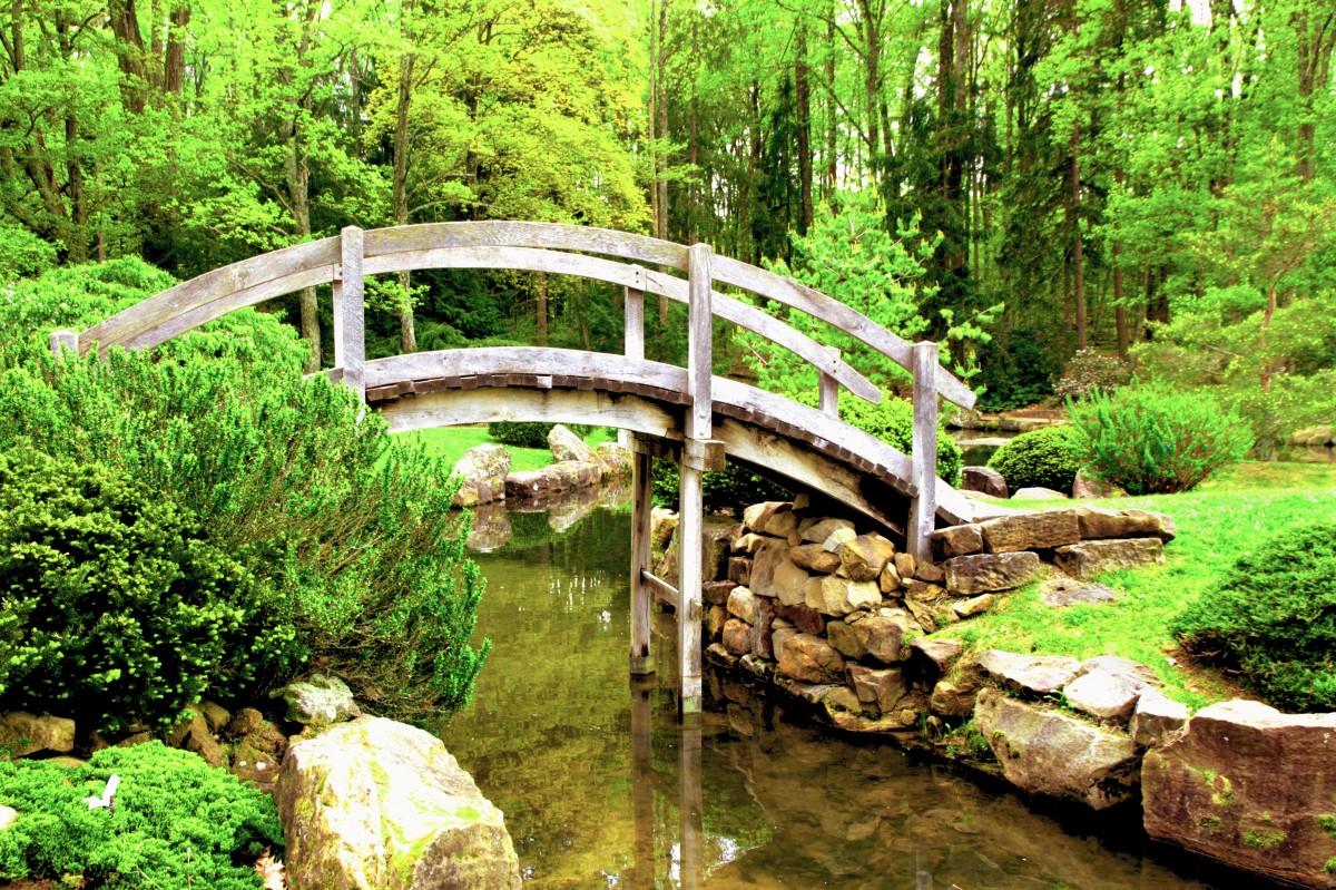 images gratuites arbre pont fleur rivi re courant zen japonais arbuste jardin. Black Bedroom Furniture Sets. Home Design Ideas