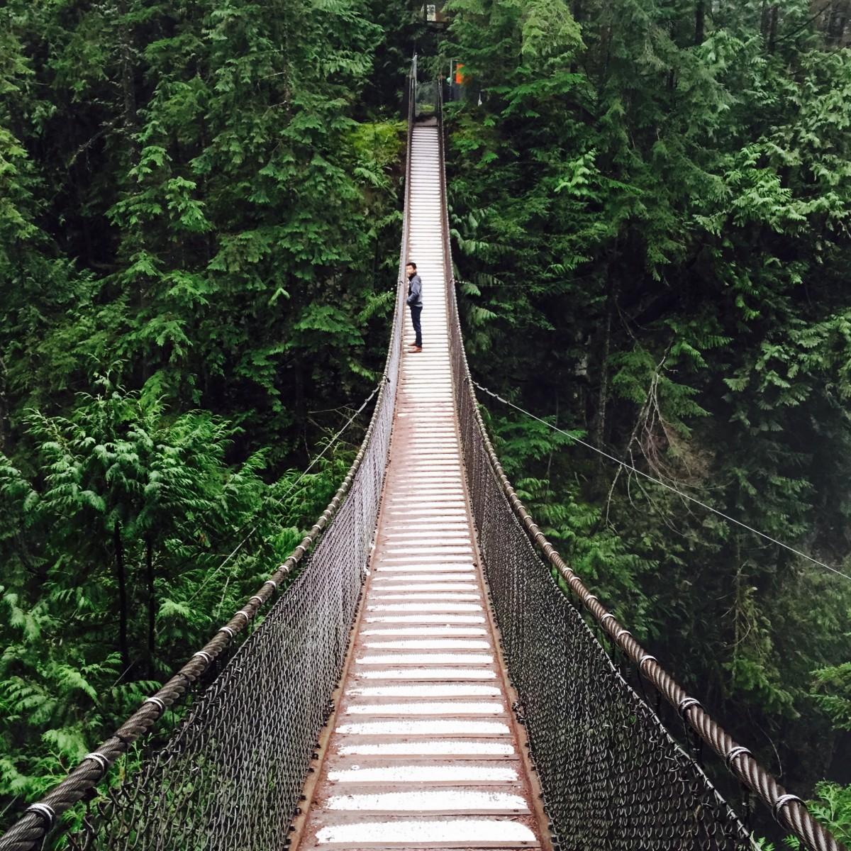 Gratis afbeeldingen bos wandelen mensen brug avontuur menigte jumping hangbrug park - Leefgebied canape ...