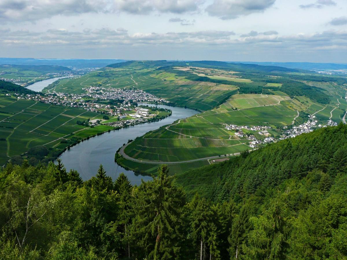 P lich Moselle Saxe Allemagne du vin Vignobles paysage village rivière vacances