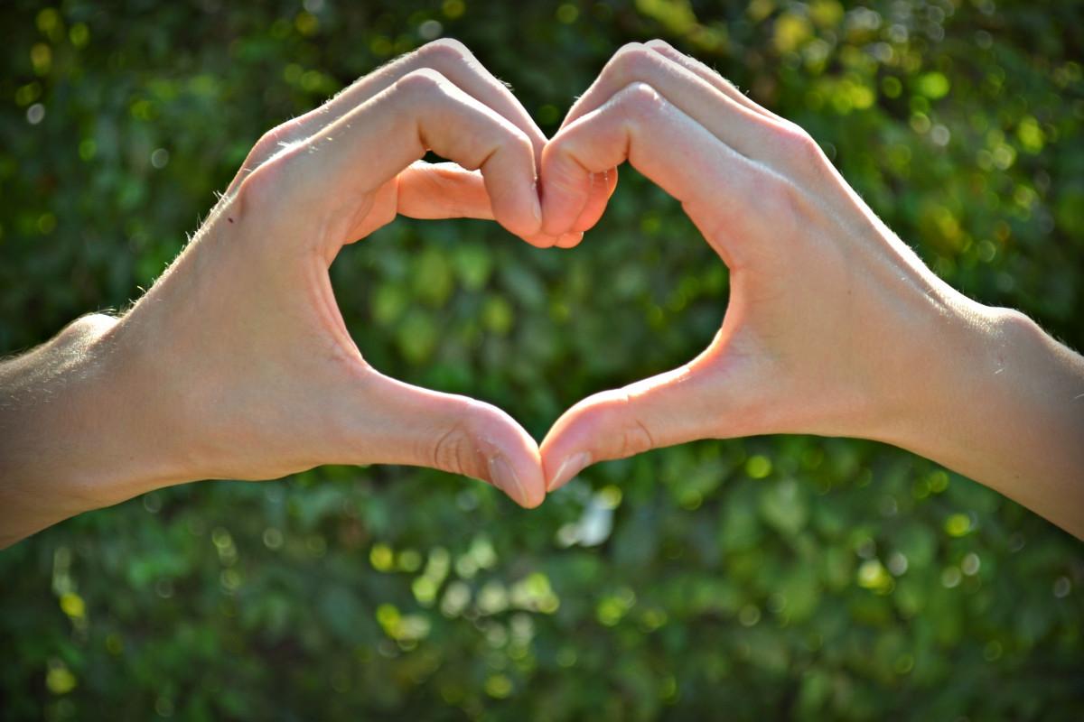 картинки сердечко в виде руки прилегает телу