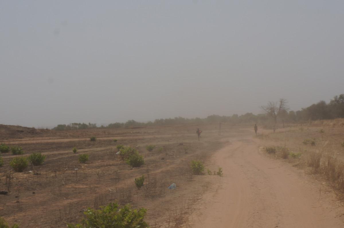 free images   landscape  horizon  marsh  field  prairie