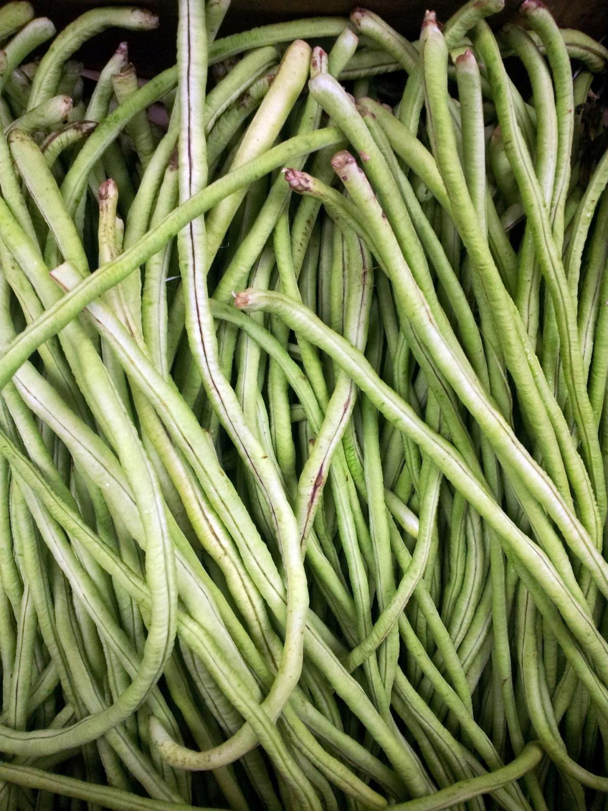 images gratuites haricot aliments cuisine herbe produire l gume surgir agriculture. Black Bedroom Furniture Sets. Home Design Ideas