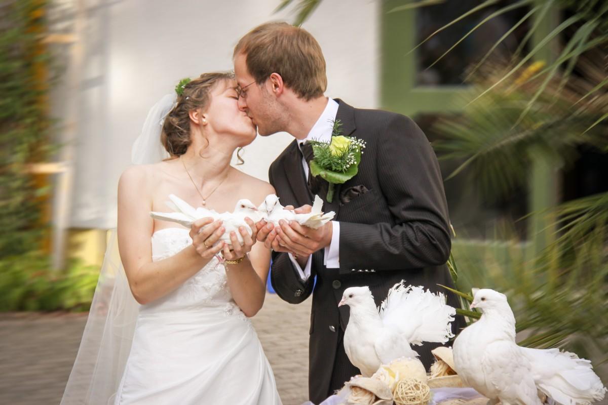 Картинки с женихом и невестой, анимация