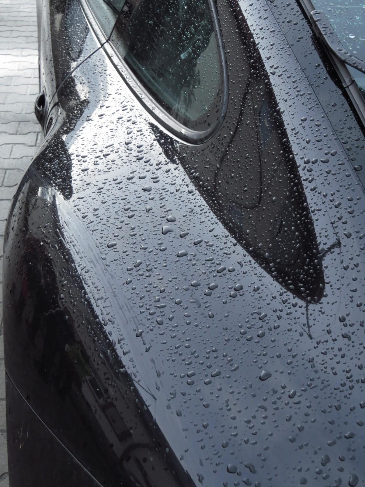 Free Images Drop Rain Floor Raindrop Wet Asphalt