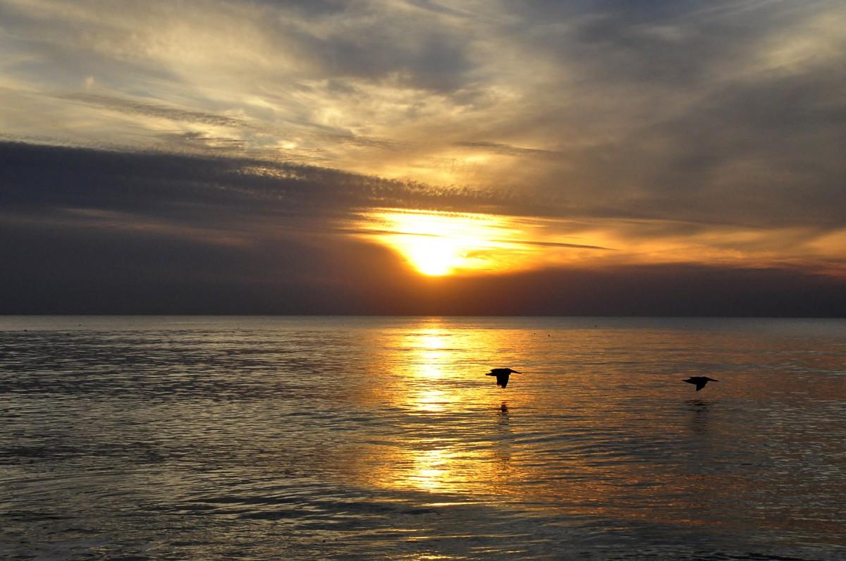 Free Images Sea Coast Water Nature Ocean Horizon