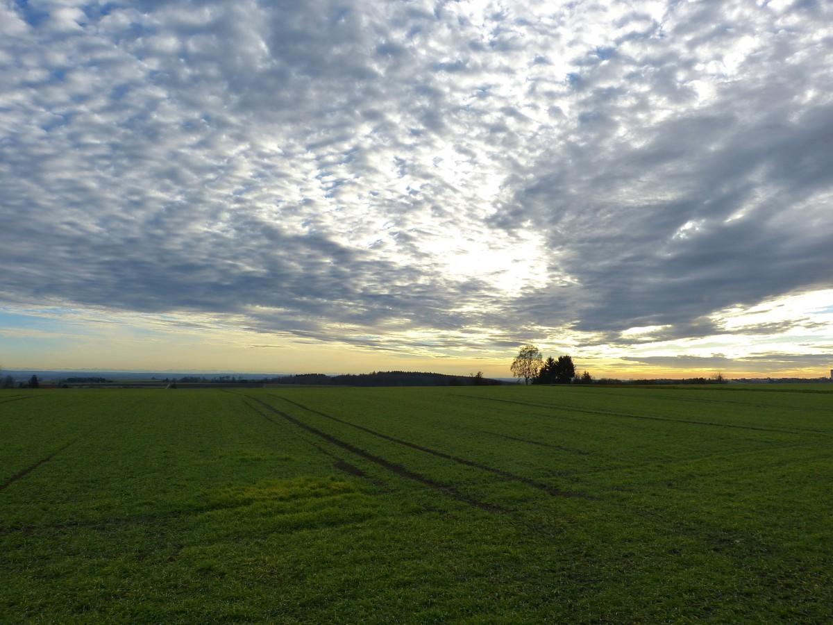 небольшие картинки поле с горизонтом угол фотообъектив, разработанный