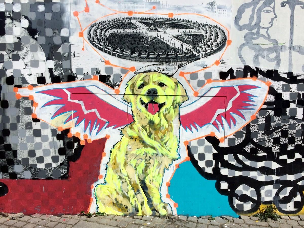 Banco De Imagens Cachorro Grafite Arte De Rua